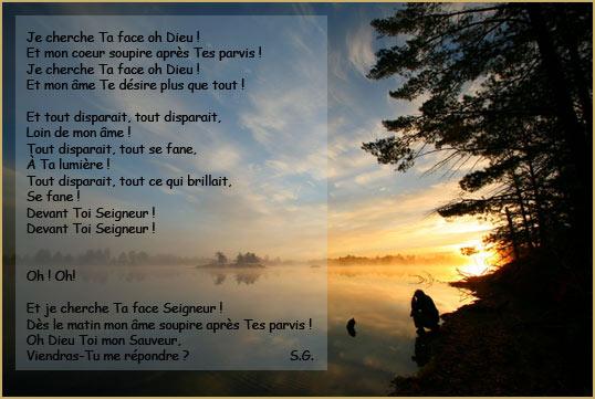 je_cherche_ta_face-1